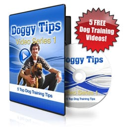 Intro Video:Doggy Dan's 5 Day Course: Introduction to Dog Training 1