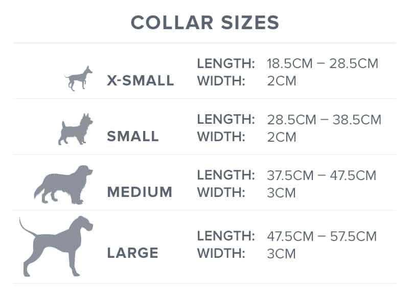 dog collar size guide