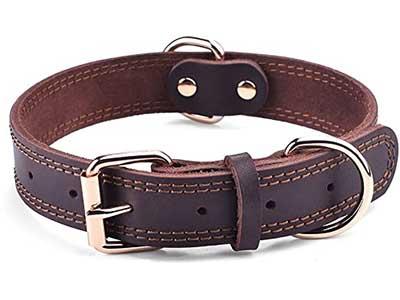 Daihaqiko Leather Dog Collar