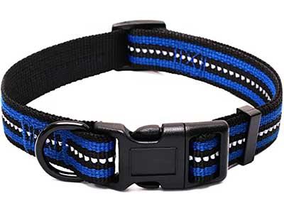 Mile High Life Reflective Dog Collar